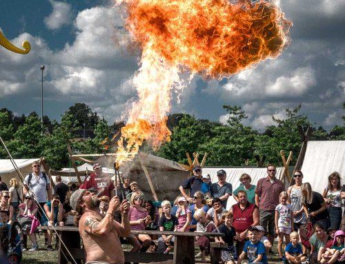 08. – 11. August 2019 Wikingertage Schleswig